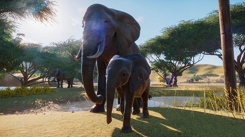NP: Frontier revela el primer tráiler in-game de Planet Zoo y anuncia su fecha de lanzamiento para el 5 de noviembre
