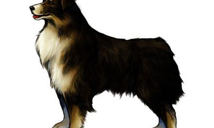 NP: Final Fantasy VIII Remastered celebra el Día Internacional del Perro