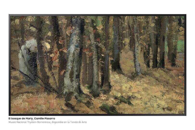 NP: El Museo Thyssen y Samsung fusionan arte y tecnología en la exposición temporal 'Los impresionistas y la fotografía'