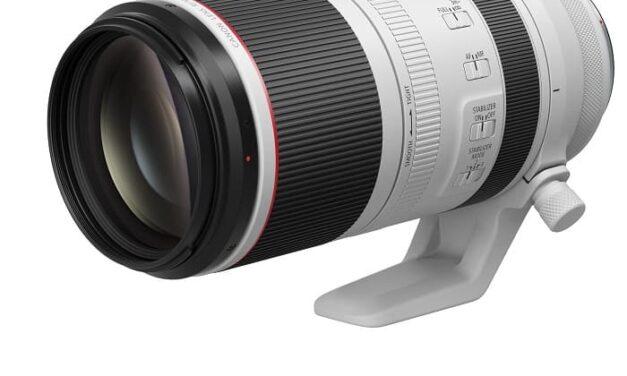 Canon lanza cuatro nuevos objetivos RF, ampliando las capacidades de la gama hacia la fotografía súper-tele, y dos multiplicadores RF