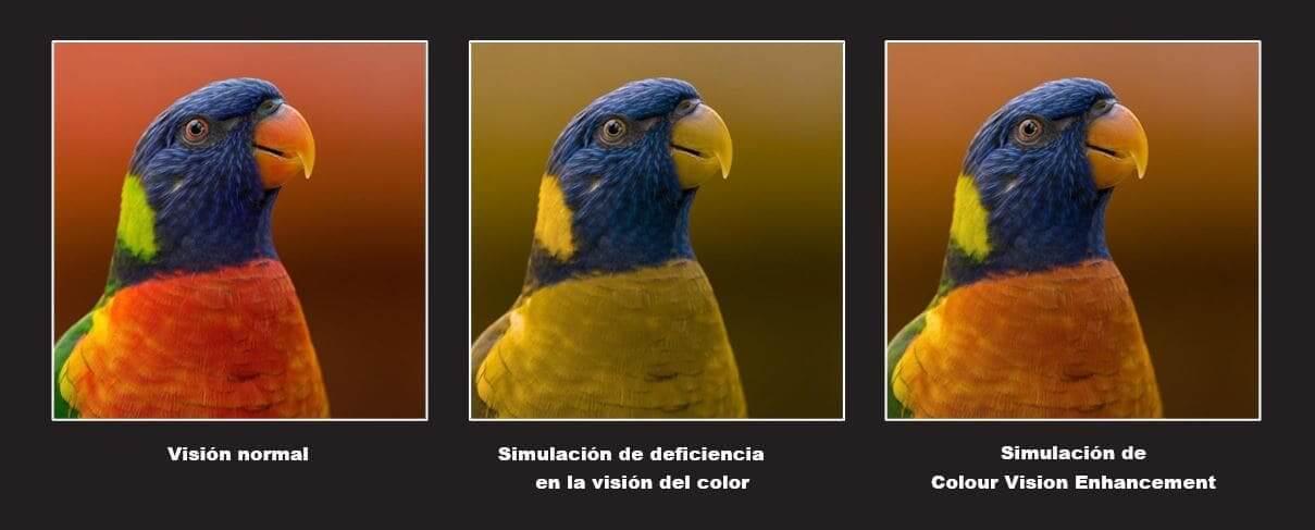 Una pantalla para todos: Colour Vision Enhancement de OPPO se adapta a las personas con deficiencias en la vision del color